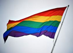 Normal_gay_vlag__2__homo