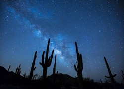 Normal_milky-way-923738_1920